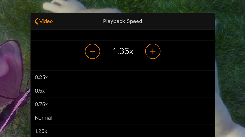 Variable-speed playback